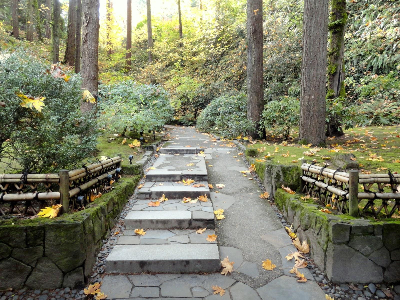 Danger Garden: Foliage Follow-up For November Hits The
