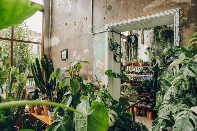 conservatory-archives-london