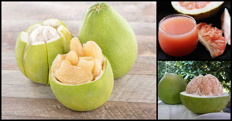 How Healthy Is The Pomelo Fruit?