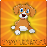 Brown And White Dog Escap…