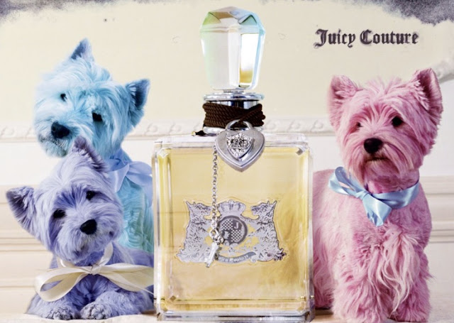 Pastel juicy couture Westie dogs by Tim Walker
