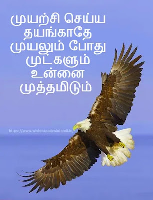 Motivational Quotes In Tamil for students