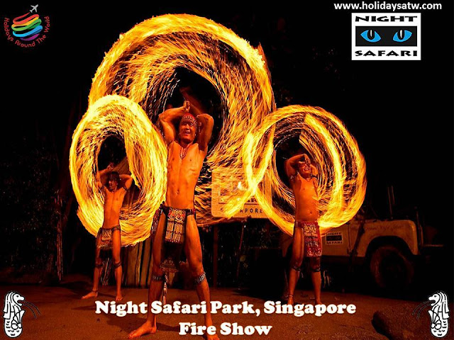 Activities to do at Night Safari, Singapore