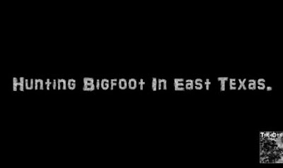 Bigfoot Sighting 2016