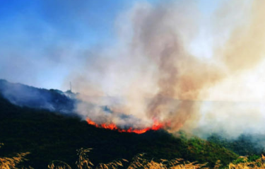 Και νέα φωτιά στην Βόρεια Εύβοια στην Καστανιώτισσα Ιστιαίας