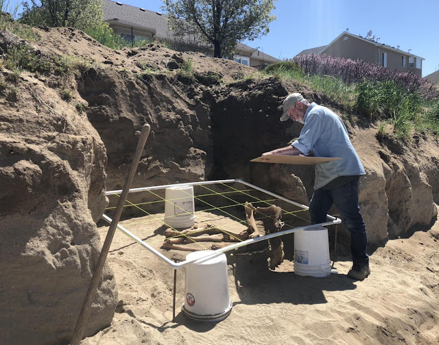 Horse remains reveal new insights into how Native peoples raised horses