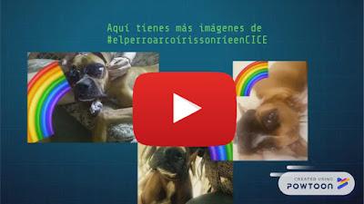 el perro arcoiris sonrie en CICE en Youtube