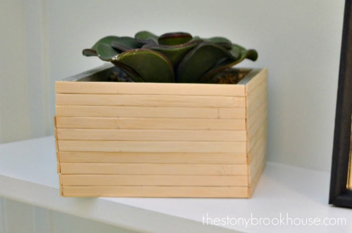 bamboo placemat sticks on planter