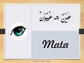 bahasa arab mata
