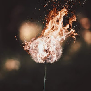 when the inner flame kicks in, you feel the passion and motivation to perform
