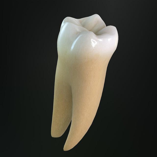 pengalaman  cabut gigi geraham,cabut gigi,prosedur cabut gigi
