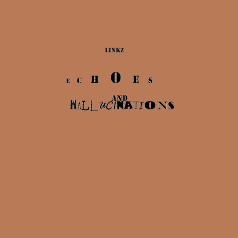 "New Song by Linkz ""Echoes and Hallucinations"""