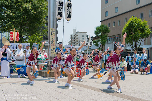 葵新連、赤ハッピ(子供踊り)の写真 1枚目
