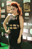 Nikesha Patel in Beautiful Figure Hugging Black Dress  at IIFA Utsavam Awards 2017  Day 2 at  04.JPG