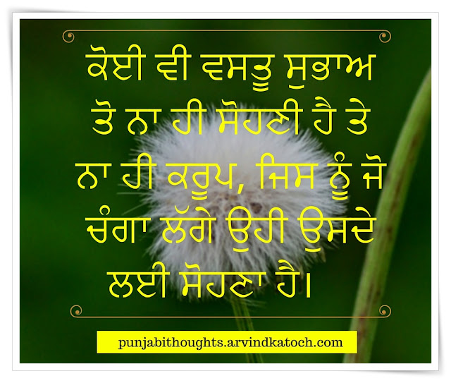 Punjabi Thought, Image, What, Someone, Likes, ਚੰਗਾ, ugly, nature, beautiful,