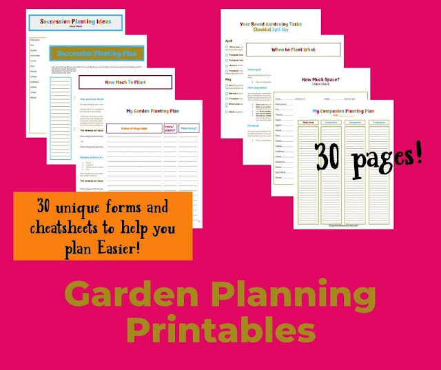 Turn your garden dreams into reality - tips on planning a vegetable garden.