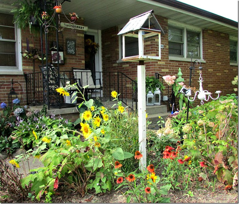 Fall showcase of a beautiful cottage garden