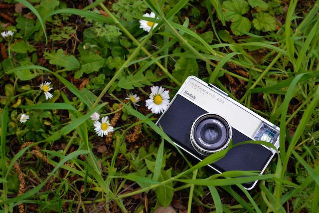 February 2020 Kodak camera on grass