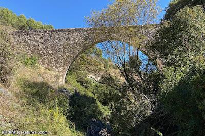 Pont Alt