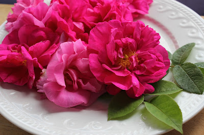Rose water in cookery Pistachio Stuffed Dates. Organic Gluten-free Recipe