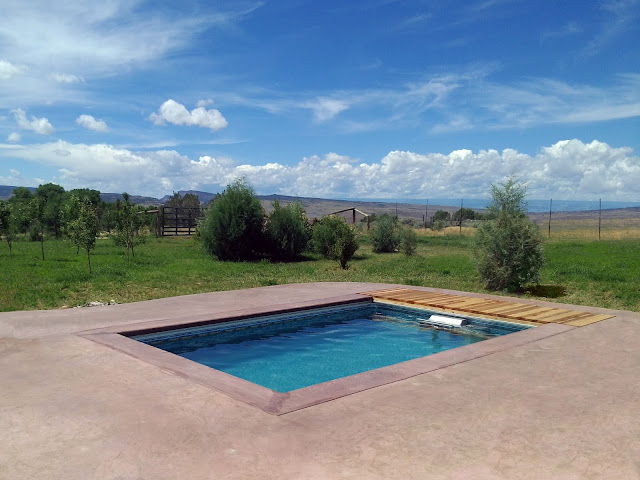 A fully in-ground Original Endless Pools swimming machine with a view of the Colorado mountains