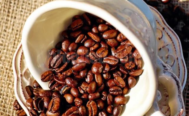 Para pecinta kopi dan penikmat kafein