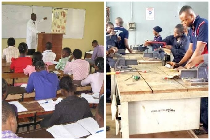 Education Vs Skills, Which One Is Really The Key To Success As A Nigerian?