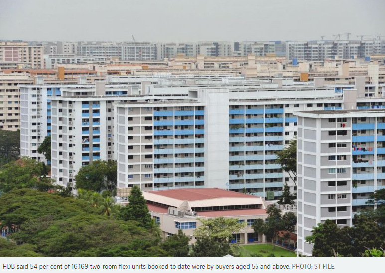 If Only Singaporeans Stopped to Think: HDB 2-Room Flexi