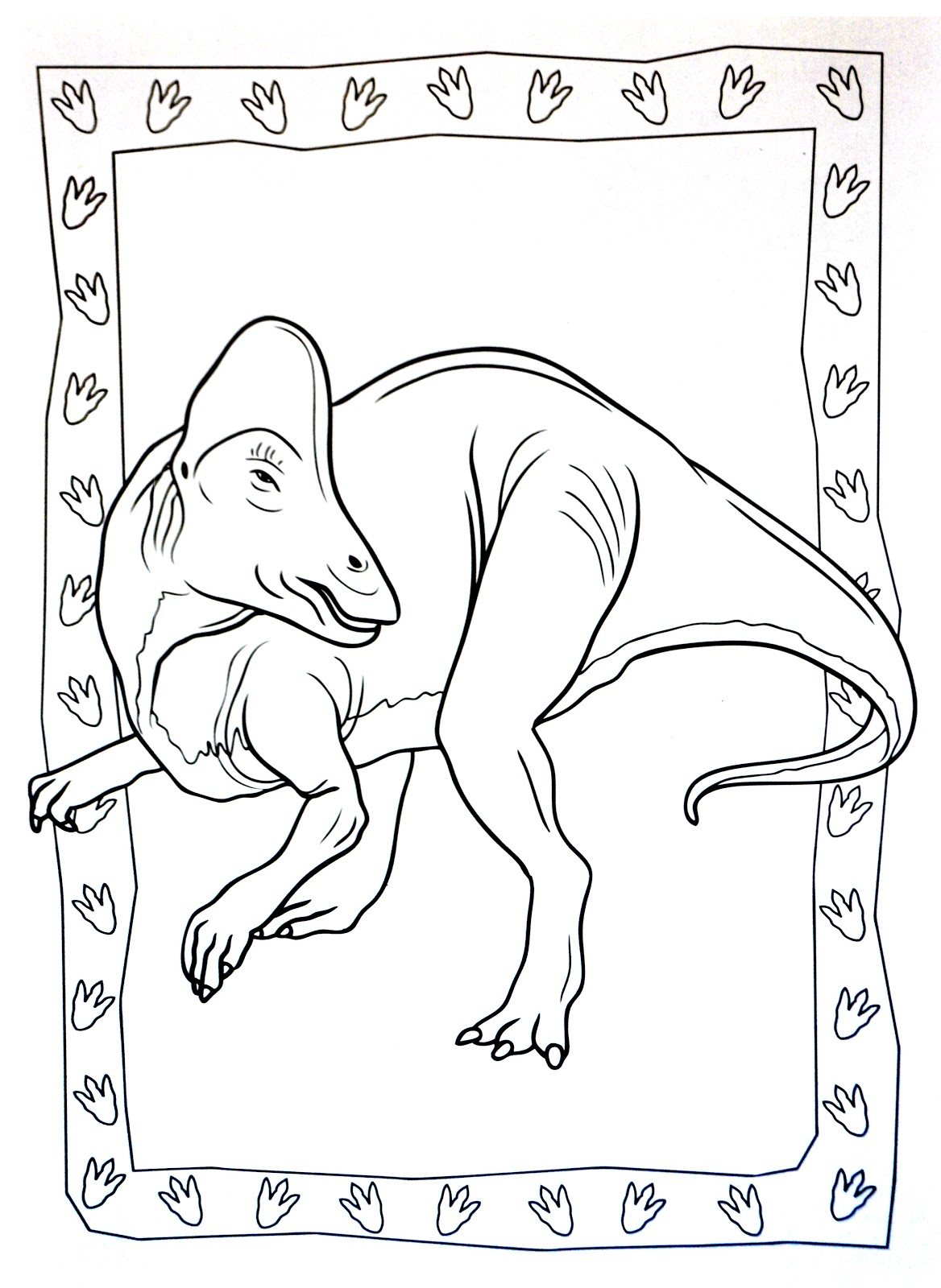 Dinosaurs coloring pages 42