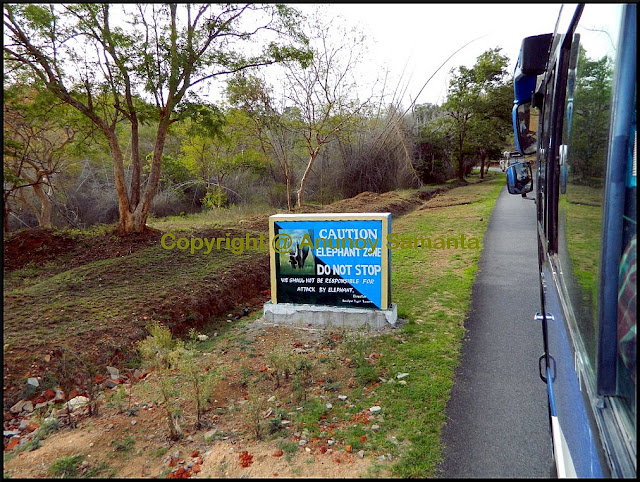 Mysore Ooty and Kodaikanal Trip with KSTDC