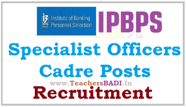 IBPS,Specialist Officers cadre Posts,Recruitment notification