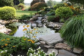 house design: kolam ikan hias