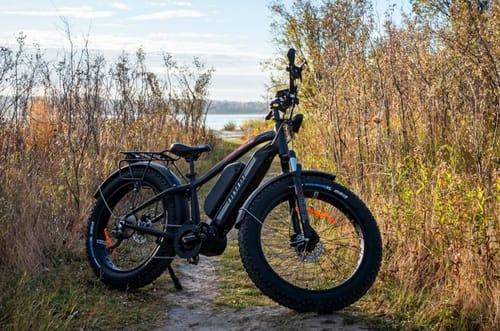 Electric bike Biktrix Juggernaut Duo