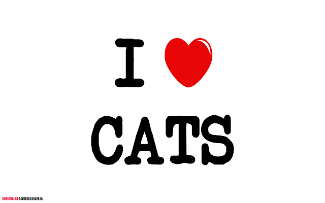 Afbeelding I love cats