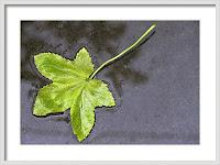Minimalist Photography Framed Print