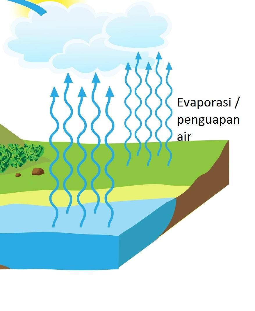 Proses Penguapan Air : proses, penguapan, Proses, Terjadinya, Hujan, Dengan, Animasi, ILMUPEDIA