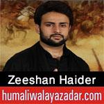 https://www.humaliwalayazadar.com/2015/07/zeeshan-haider-nohay-2006-to-2016.html