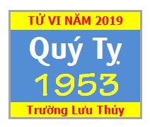 Tử Vi Tuổi Quý Tỵ 1953 Năm 2019 - Nam Mạng