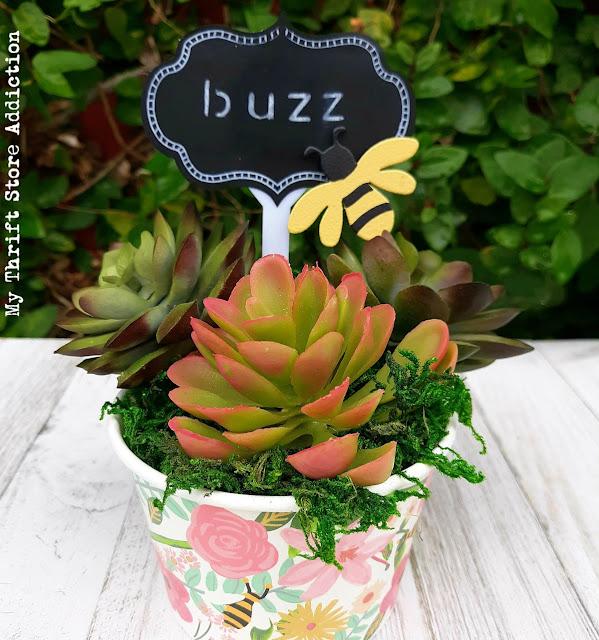 repurposed dollar store succulent planter