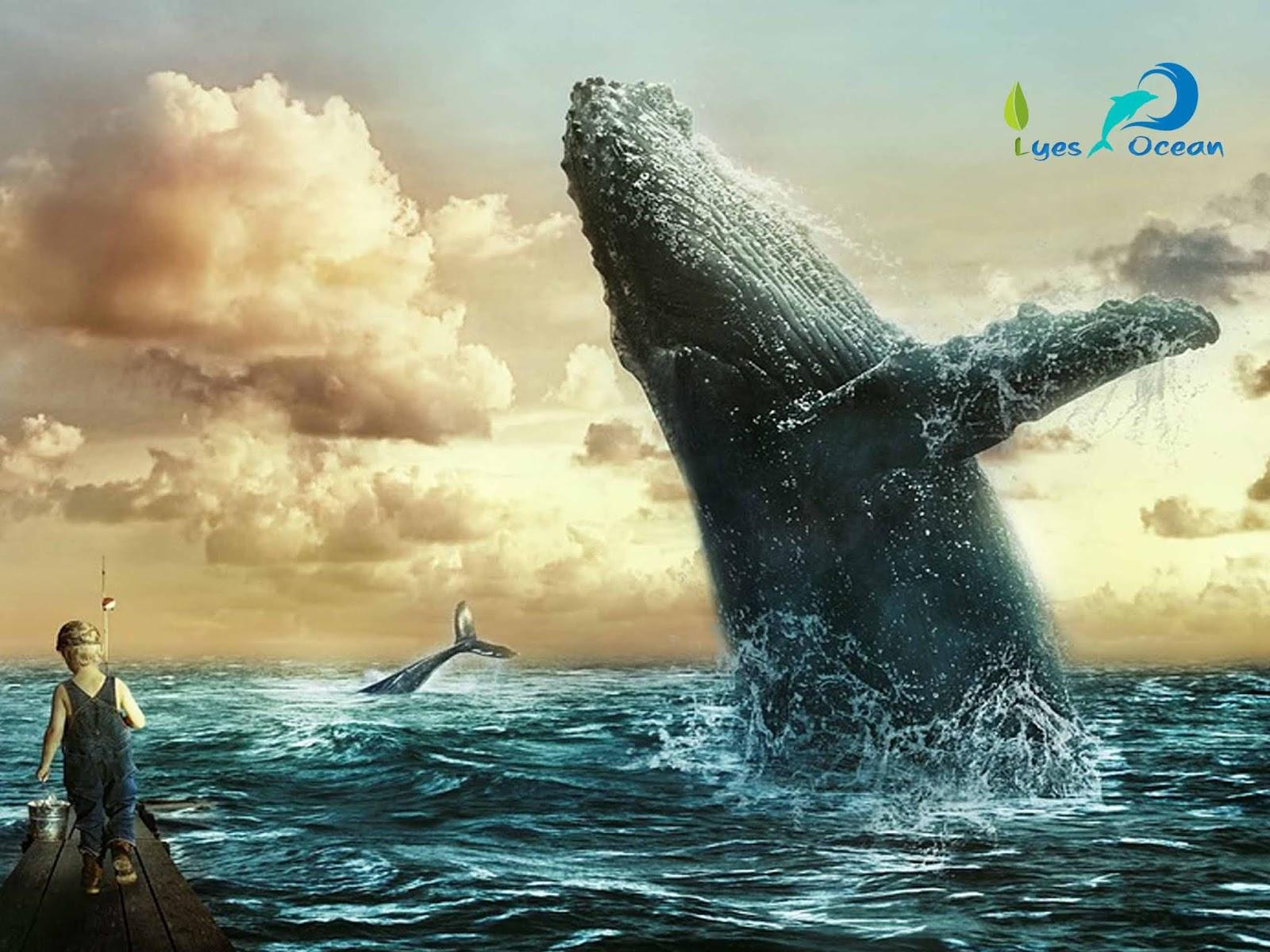 le saut de baleine