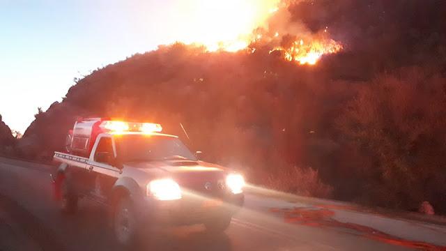 Φωτιά στη Λωρίδα Σαγιάδας (+ΦΩΤΟ)