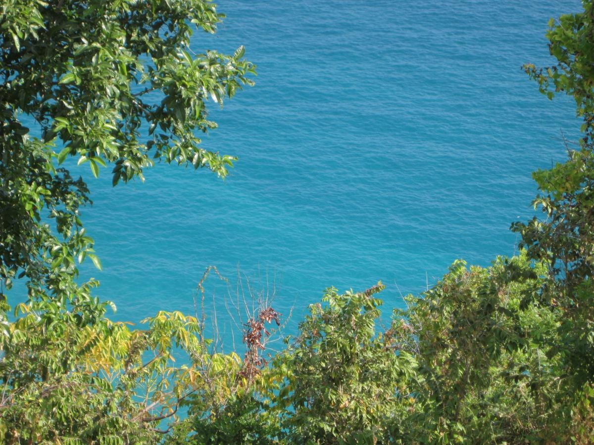아름다운 빛깔의 바다
