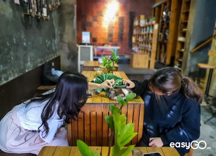 quán cafe cá Koi ở Hà Nội