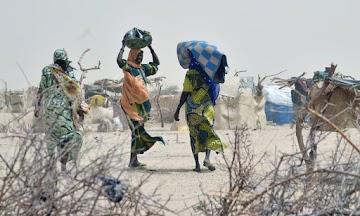 Milhões de pessoas precisam de ajuda urgente para evitar a fome na bacia do Lago Chade