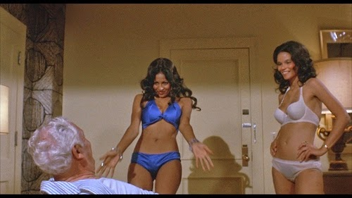 93531f4b5 Pam Grier and Juanita Brown in the Movie  Foxy Brown