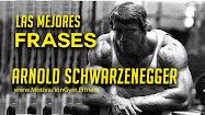 Arnold Schwarzenegger frases