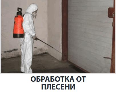 Как убрать плесень в квартире