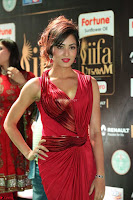 Videesha in Spicy Floor Length Red Sleeveless Gown at IIFA Utsavam Awards 2017  Day 2  Exclusive 04.JPG
