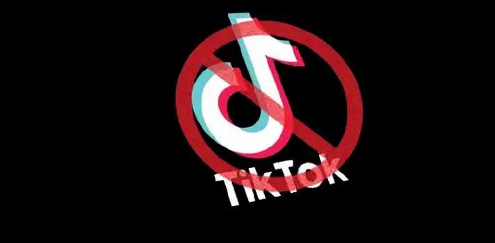 Pakistan Bans TikTok App