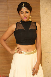 Roshni Prakash in a Sleeveless Crop Top and Long Cream Ethnic Skirt 123.JPG